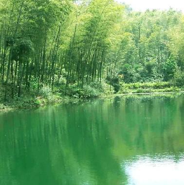 【特价】溧阳天目湖:南京到南山竹海一日游(天天发)